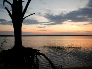 A sunset across the western marsh of Cumberland Island is an unforgettable sight.
