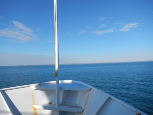 Return ferry to Point Judith