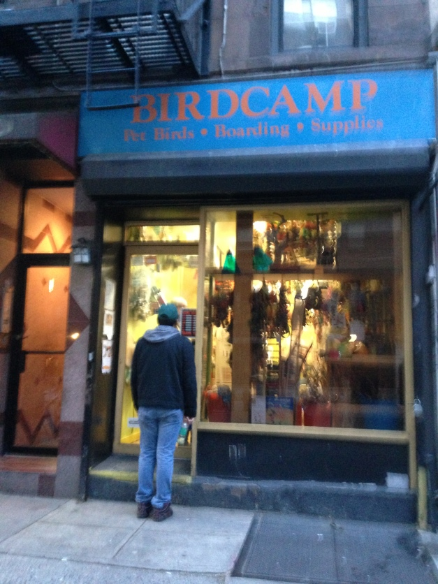 Bird Camp is tiny storefront between 1st and 2nd Aves. You have to ring the bell for admission (prevents winged escapees!)