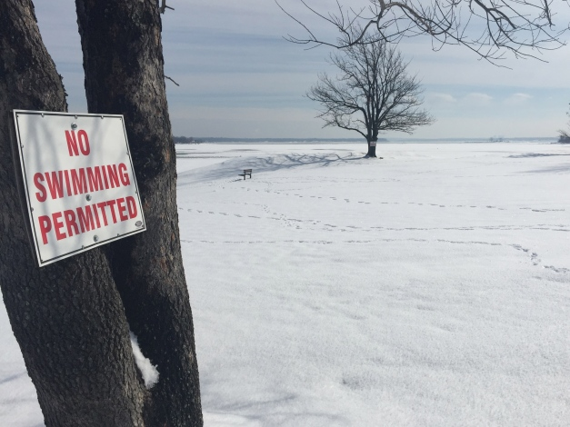Davenport Park, New Rochelle, NY. February 22, 2015