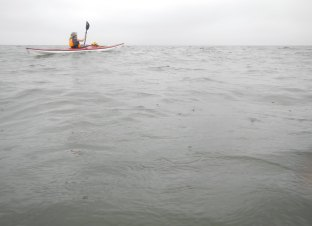 Bea paddling between the raindrops. Long Island Sound