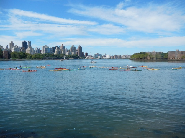 1:49 p.m. 160 kayaks arrive at Hallets Cove for lunch and to wait for slack tide at Hell Gate