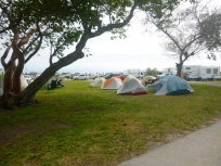 Our tents among the RVs