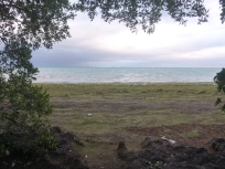"The view from our ""hotel"" in Bahia Honda"